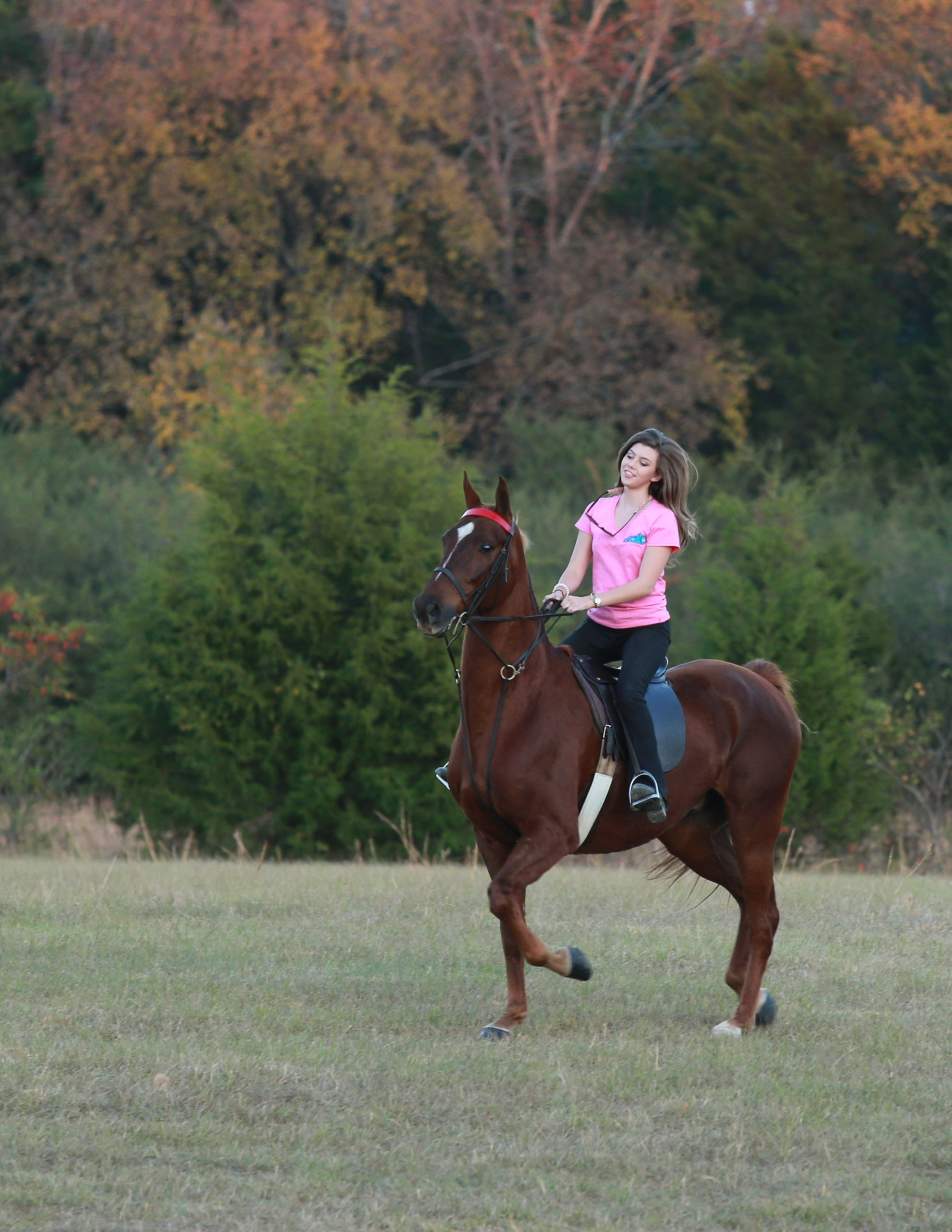 >Future equine vet Sierra Newsome takes her horse on a trail ride