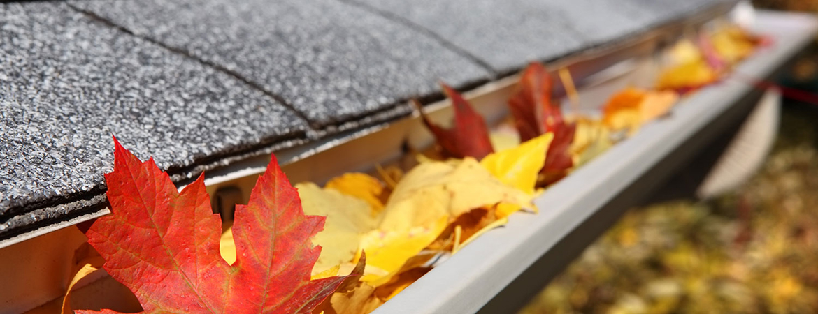 Pretty foliage can quickly turn ugly when it falls from trees and starts to call your gutters home
