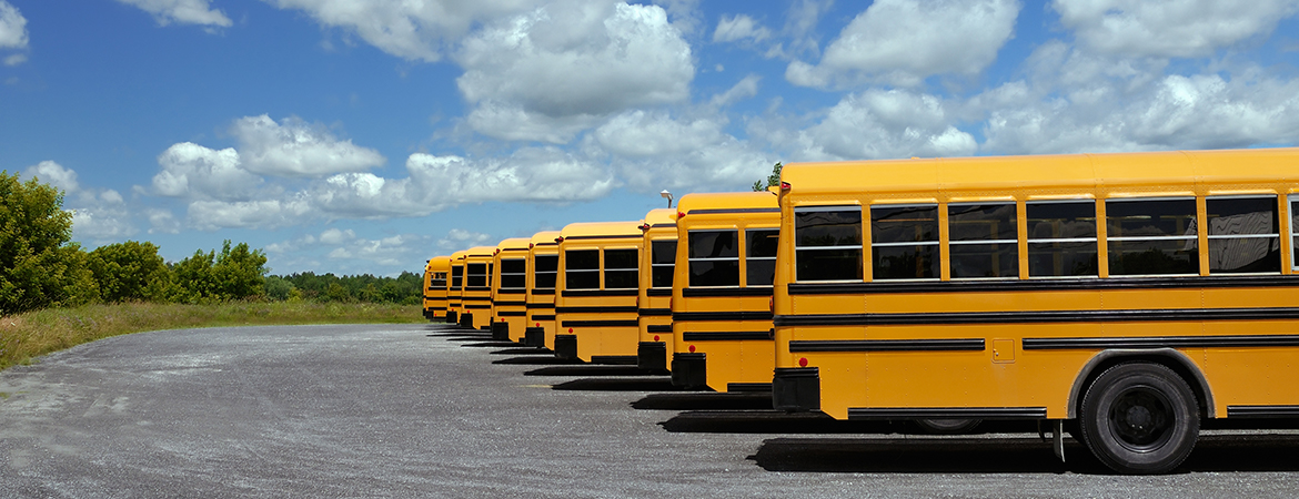 5 tips for sharing the road with school buses blog