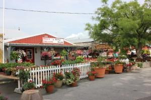 The market center at Reid's Orchard near Owensboro.