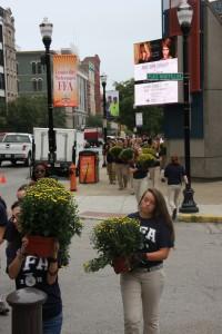 Local FFA members planted mums along Main Street.