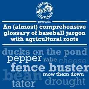 baseball jargon