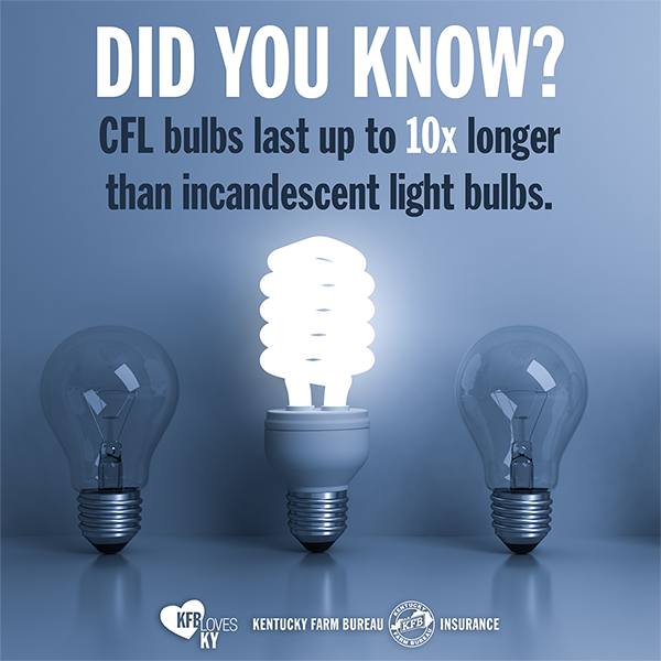 Disposing Of CFL Bulbs The Right