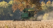 Grain Crops Update: Exponential Production Increases Seen Over Past Four Decades