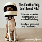 Fireworks safety tip 3
