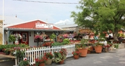 Reid's Orchard caters to the crowd
