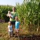 """Truly a """"haven"""", Adair County farm market caters to kids"""