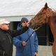 For Frank Penn, Horses and Tobacco have made a Great Combination on the Farm
