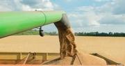 Timing, price awareness critical to marketing 2017 grain crop