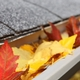 Trees, leaves and debris: Your gutters' worst enemies