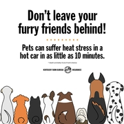 heat stroke safety tip