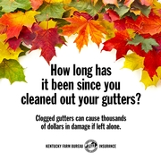 clogged gutter tips.jpg