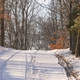Down the Backroads: Moving on Christmas Day