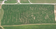 "Devine's has ""Big Blue"" corn maze"
