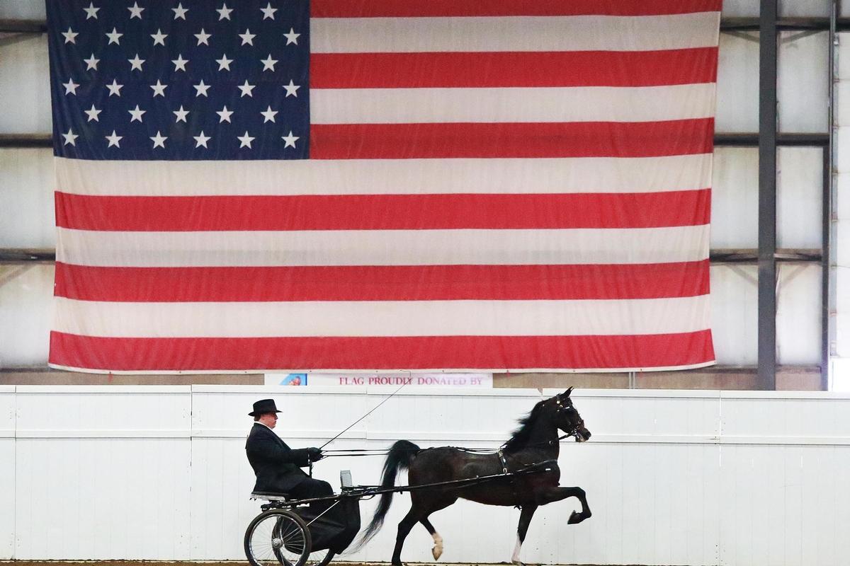 SB 139 Designates Horses as Livestock