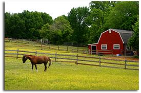farm insurance kentucky farm bureau