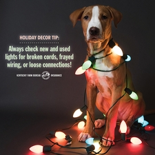 Christmas tree safety tip 3.jpg