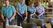 Fleming County Annual Youth Livestock Show and Auction: 75 years of Benefit to Area Students